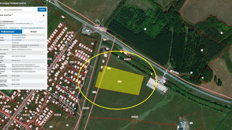 Один земельный участок — два кадастровых номера. Чем опасна эта путаница?